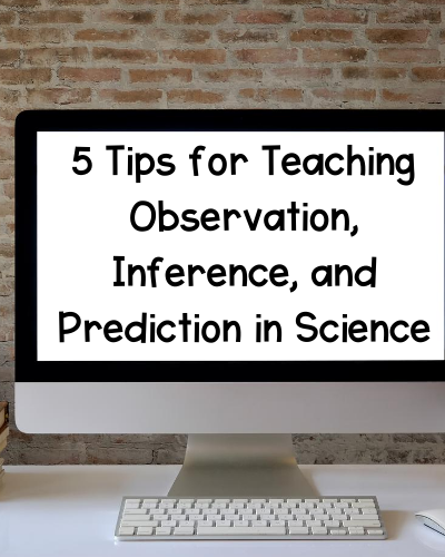 observation inference prediction