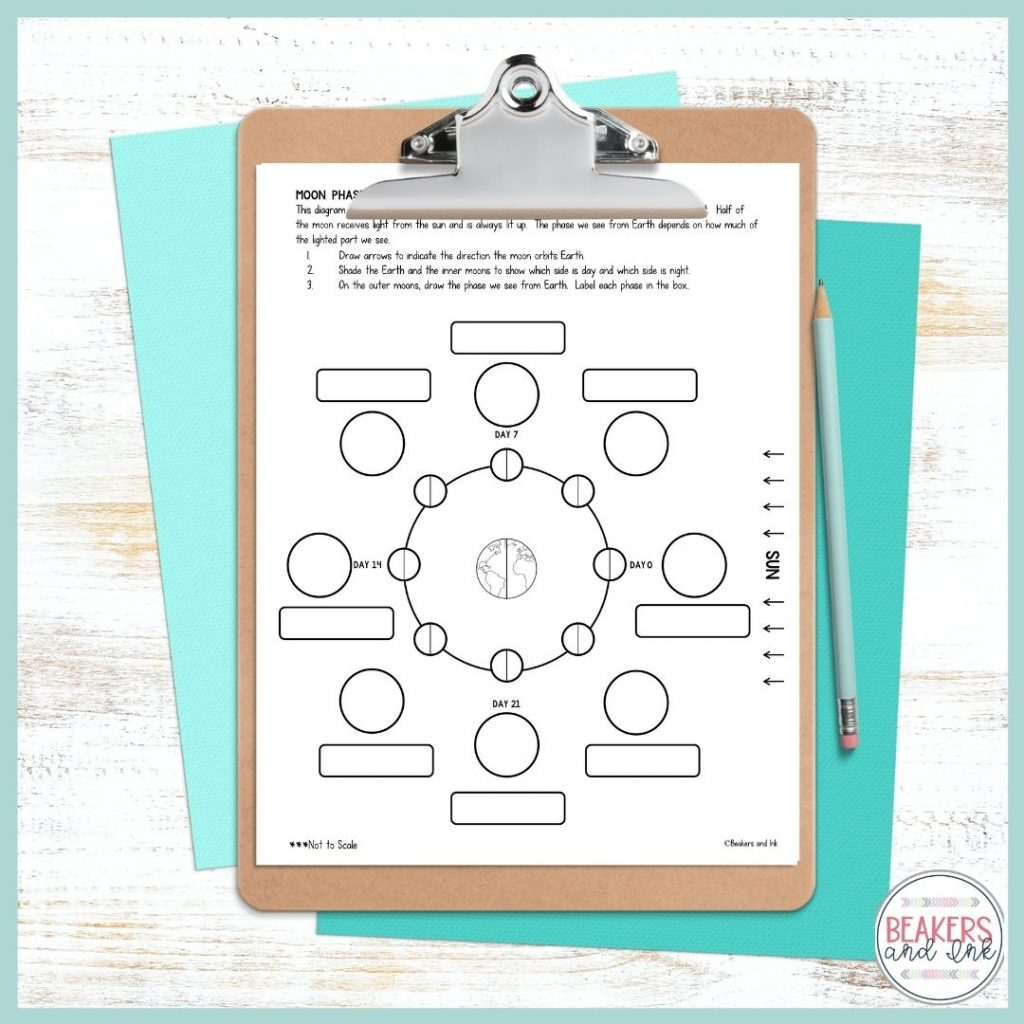 phases-lof-the-moon-worksheets